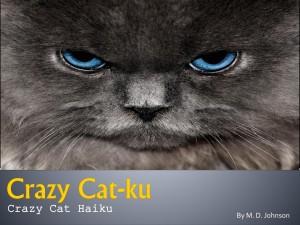 Crazy Cat-ku cover-image